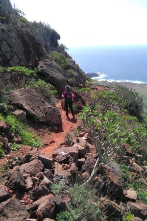 Hiking Tour to Teno's Lighthouse - Tenerife