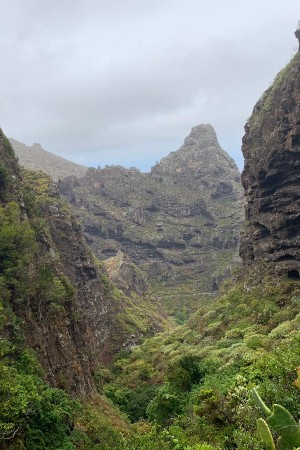 Hiking Tour Isla Baja - Buenavista - Tenerife