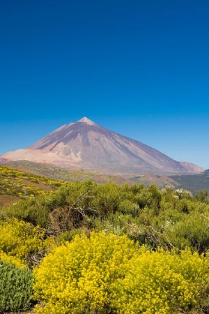 Hiking Tour Teide National Park - Tenerife