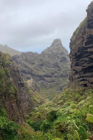 Hiking Tour Isla Baja - Tenerifenerife